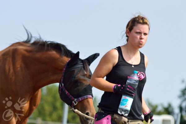 Angespannter Mensch führt Pferd